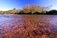 Piscasaw Creek in Illinois. Beautiful springtime view of Piscasaw Creek in northern Illinois Royalty Free Stock Photos