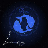 Pisces Astrology constellation of the zodiac Stock Images