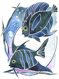 Pisces, Astrology symbol two fishes. Astrology symbol two fishes on white background royalty free illustration