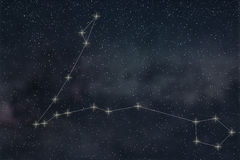 Pisces Constellation. Zodiac Sign Pisces constellation lines stock illustration