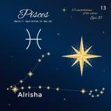 pisces Hoog gedetailleerde vectorillustratie 13 constellaties van de dierenriem met titels en eigennamen voor sterren Royalty-vrije Stock Afbeelding