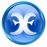 Pisces zodiac button icon Stock Photography