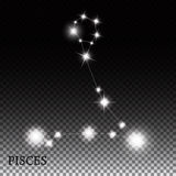 Pisces Zodiac Sign of the Beautiful Bright Stars. Vector Illustration EPS10 Stock Photography