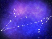 Pisces Zodiac Stock Image