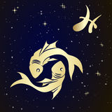 Pisces zodiac sign is the starry sky. Illustration Royalty Free Stock Photos