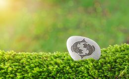 Pisces zodiac symbol in stone. On grass with nature bokeh light background stock photography