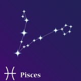 Pisces zodiacal constellation vector illustration, horoscope sym Royalty Free Stock Image