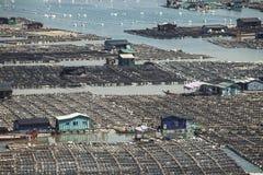 Piscicoltura dei frutti di mare, industria della pesca sul mare, Fujiang, Cina Fotografia Stock Libera da Diritti
