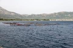 Piscicoltura nel mare Immagine Stock