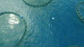 Piscicultura de la jaula en el océano almacen de metraje de vídeo