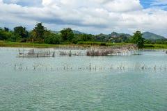 Piscicultura e incubação no rio de Poso perto de Tentena indonésia imagem de stock royalty free
