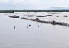 Pisciculture aquaculture fish farming Stock Image