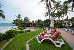 Piscina ao lado do mar com árvore de coco. Imagens de Stock