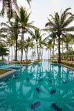 Piscina ao lado do mar com árvore de coco. Imagens de Stock Royalty Free
