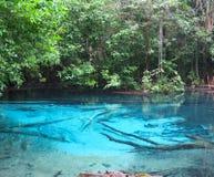 Piscina azul asombrosa con la agua caliente Imágenes de archivo libres de regalías