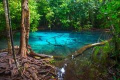 Piscina azul en la provincia de Krabi Foto de archivo