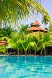 Piscina con le palme della noce di cocco, verticali Fotografie Stock Libere da Diritti