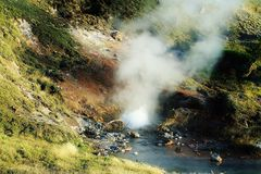 Piscina de agua de ebullición del géiser el vapor y la niebla Imagen de archivo libre de regalías