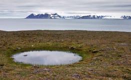 Piscina de agua en la costa de Svalbard Fotos de archivo libres de regalías