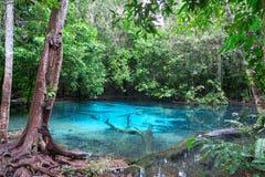Piscina de agua muy azul hermosa y clara Fotografía de archivo libre de regalías
