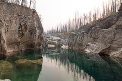 Piscina de color verde oscuro del agua inmóvil en la garganta de la cala del prado en el área de Bob Marshall Wilderness en Monta Imágenes de archivo libres de regalías