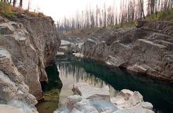 Piscina de color verde oscuro del agua inmóvil en la garganta de la cala del prado en el área de Bob Marshall Wilderness en Monta Imagenes de archivo