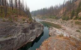Piscina de color verde oscuro del agua inmóvil en la garganta de la cala del prado en el área de Bob Marshall Wilderness en Monta Imagen de archivo