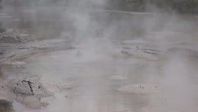 Piscina de ebullición del fango en el nz de Rotorua metrajes