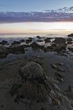 Piscina de la marea Foto de archivo libre de regalías