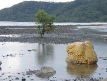 Piscina de la roca Imagenes de archivo