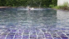 Piscina de vuelta del estilo libre del nadador que se zambulle metrajes