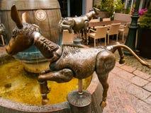 Piscina del burro Imagenes de archivo