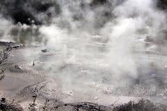 Piscina del fango que burbujea Foto de archivo libre de regalías
