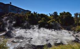 Piscina del fango Reserva geotérmica de Whakarewarewa En alguna parte en Nueva Zelandia Imagen de archivo libre de regalías