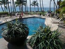 Piscina del hotel con las palmeras y océano en la parte posterior Imágenes de archivo libres de regalías
