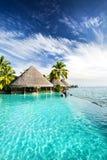 Piscina del infinito con las palmas y el océano tropical Fotos de archivo