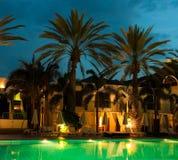 Piscina di notte contro la palma t Fotografia Stock Libera da Diritti