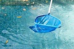 Piscina di pulizia delle foglie cadute con la rete blu della scrematrice Fotografia Stock