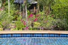 Piscina en el jardín tropical, Tailandia Fotos de archivo libres de regalías