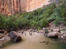 Piscina esmeralda superior en el parque nacional de Zion Foto de archivo