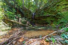 Piscina natural de la selva tropical Fotografía de archivo libre de regalías