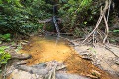 Piscina natural de la selva tropical Fotografía de archivo
