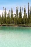 Piscina natural de la turquesa Foto de archivo