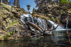 Piscina natural en la parte inferior de la cascada de Radule en la isla de Córcega Imagenes de archivo