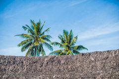 Piscina, palmeiras e construções tropicais com telhado cobrido com sapê imagem de stock royalty free