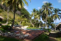 Piscina rodeada por los árboles y la playa de coco fotos de archivo