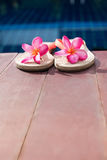 Piscina rosa del frangipane delle pantofole Fotografia Stock