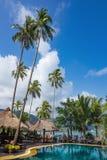 Piscina su un tropicale immagine stock libera da diritti