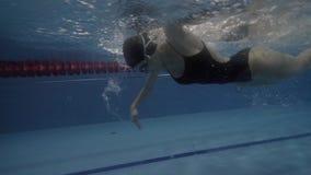 Piscina subaquática de flutuação do curso de rastejamento do nadador profissional da mulher video estoque