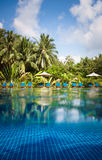 Piscina tropical Foto de Stock Royalty Free